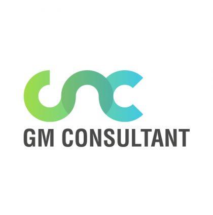 Identité web GM Consultant
