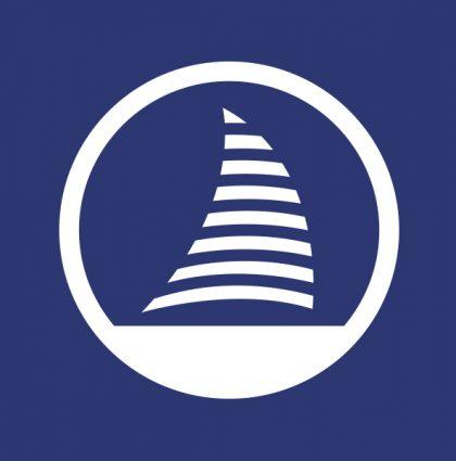 Logo Connect Pro